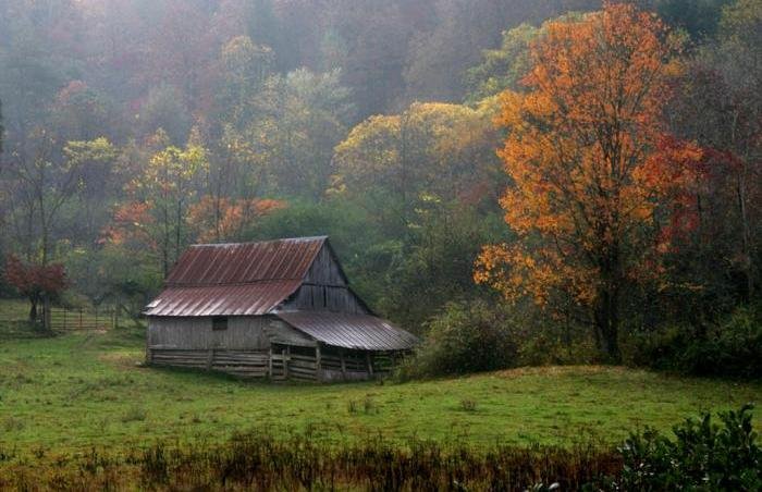 Persimmon Barn Autumn